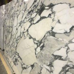 Calacatta Corchia Marble