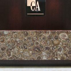 Albero Caesarstone Quartz Front Desk