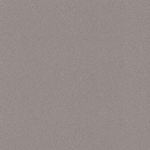 Caesarstone Sleek Concrete Quartz