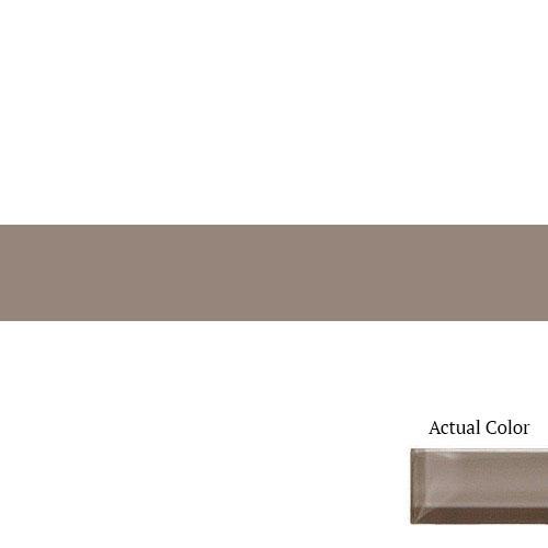 Daltile Color Wave CW08 2x12 Wisteria