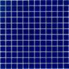 Pacific Ocean 1X1 Tile