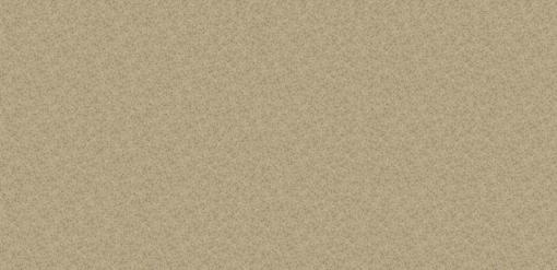 Bamboo Silestone Quartz Full Slab
