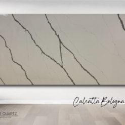 Calcatta Bologna Quantum Quartz Slab1