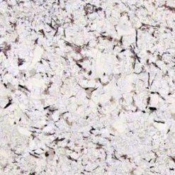 Mystic Spring Granite
