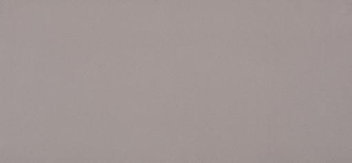 Sleek Concrete Caesarstone Quartz Full Slab