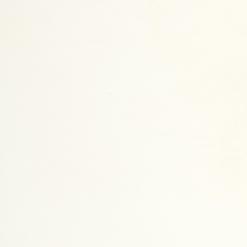 Vivid White Caesarstone Quartz